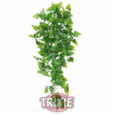Trixie Phyllo 76234 - 13x40см