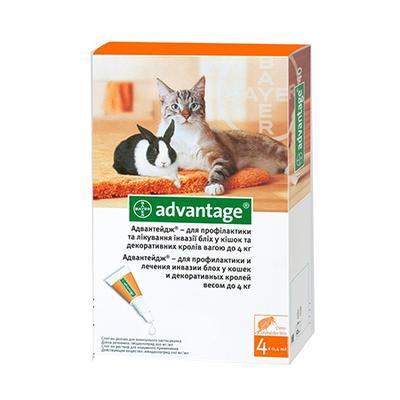 Bayer Advantage (Адвантейдж) 40 капли на холку от блох у котов до 4 кг, 1 пипетка (4 в уп.)