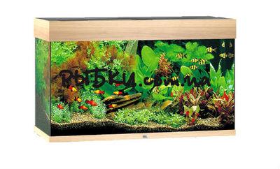 Аквариум Juwel Rio 350 светлый дуб