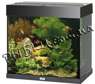 Аквариум Juwel Lido 120 черный LED 120 литров