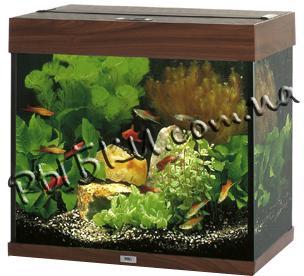 Аквариум Juwel Lido 120 коричневый LED 120 литров