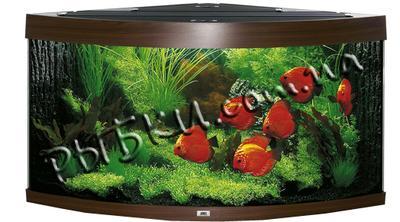 Аквариум Juwel Trigon 190 коричневый