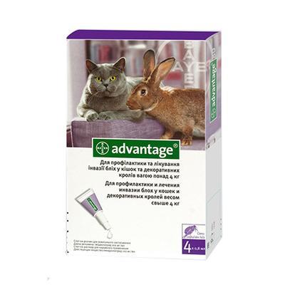 Bayer Advantage (Адвантейдж) 80 капли на холку от блох у котов весом 4-8 кг, 1 пипетка (4 в уп.)