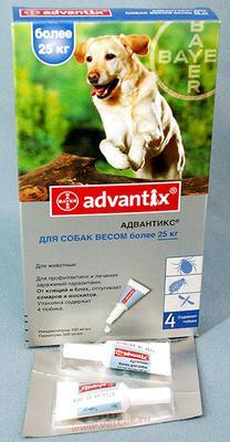 Bayer Advantix (Адвантикс) от блох и клещей у собак более 25  кг, 1 пипетка (4 в уп.)