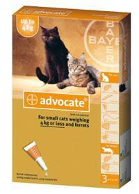 Bayer Advocate (Адвокат) капли на холку от блох у котов до 4 кг, 1 пипетка (3 в уп.)