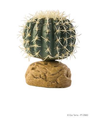 Hagen ExoTerra Barrel Cactus small PT-2980