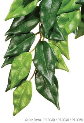 Hagen ExoTerra Ficus Medium PT-3040