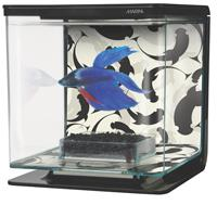 Hagen Marina Betta Kit Ying_Yang - аквариум для петушка, 13348 image 2
