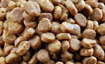 Josera Regular (25/15) - основной премиум корм для взрослых собак, 100 г (развес)