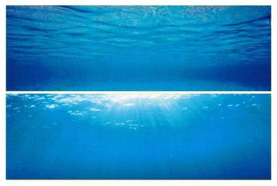 Juwel Poster2 L - фон для аквариума, 86262
