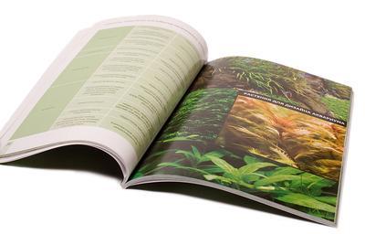 Книга Ермолаева о растениям