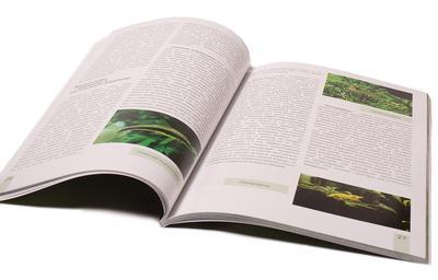 Книга Ермолаева о растениях