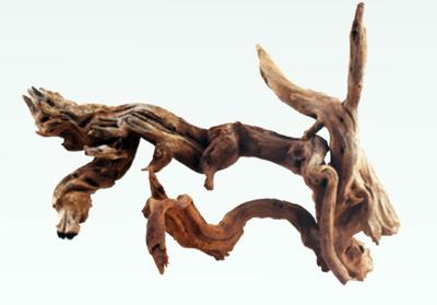 Корень ikebana slim Amtra 20-40 см