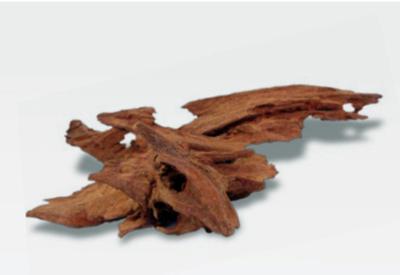 Корень jati Amtra 15-25 см - коряга для сомиков