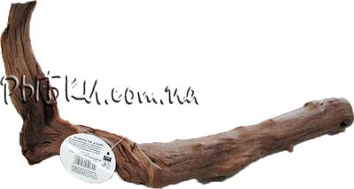 Корень manila Croci размеры в ассортименте