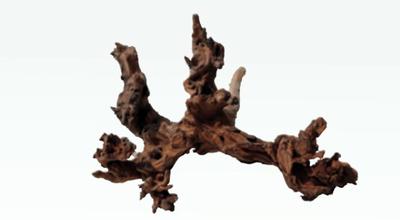 Корень mystic wood Amtra 15-20 см - азиатское дерево, для крепления растений