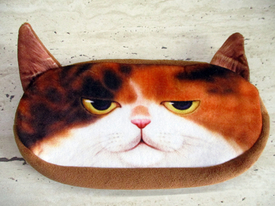 Пенал Кот №10