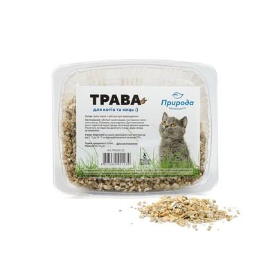Природа быстрорастущая трава для кошек