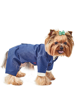 Природа Pet Fashion Джованни - костюм-тройка, размер XS