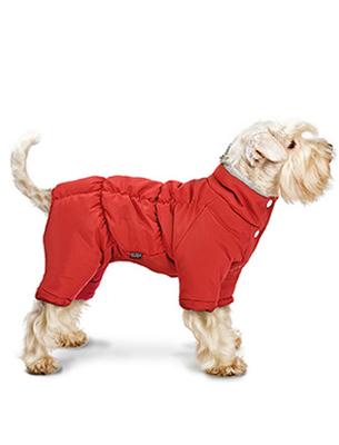 Природа Pet Fashion Индиго - комбинезон, размер S2