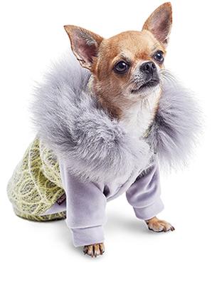 Природа Pet Fashion Тифани - толстовка, размер S