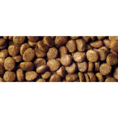 Purina Pro Plan Original сухой корм для котов, лосось 100 г (развес)