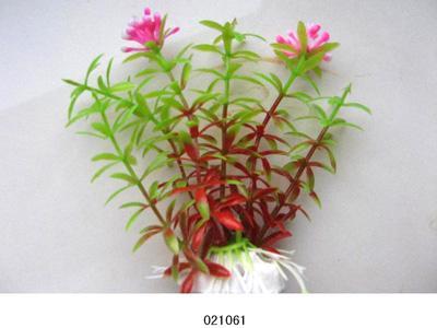 Растение Lang №021061