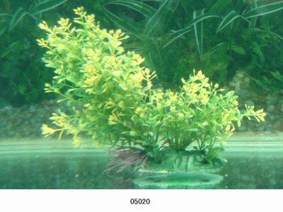 Растение Lang №05020