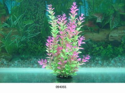Растение Lang №094355