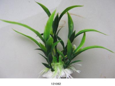 Растение Lang №121062