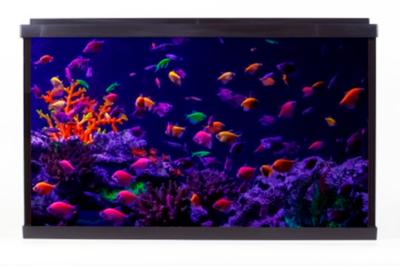 Аквариум для рыбок глофиш Resun Glo Fish WPG 60 56,7 л