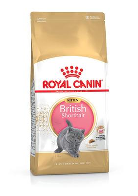 Royal Canin British Shorthair Kitten - корм для котят породы британская короткошерстная, 2 кг
