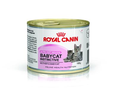 Royal Canin Mother and Babycat - консерва для котят до 4 мес, беременных и кормящих кошек, 195 г