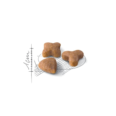 Royal Canin Sensible корм для котов с чувствительным пищеварением, 100 г (развес)