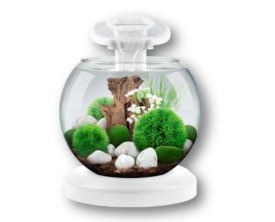 Tetra Duo Waterfall Globe White - аквариум для небольших рыбок, 6,8 л, 279957